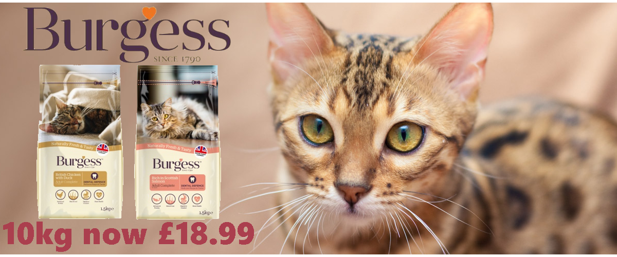 Burgess Cat 10kg