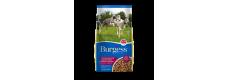 Burgess Supadog Adult Greyhound and Lurcher 12.5kg