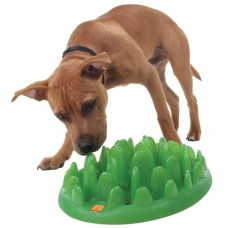 Company of Animals Green Catch Slow Dog Feeder