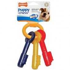Nylabone Puppy Chew - Regular Keys