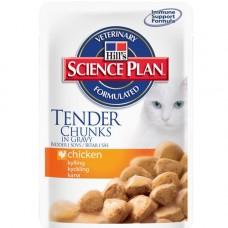 Hills Feline Tender Chunks in Gravy Chicken 12x85g
