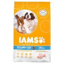Iams Puppy/Junior - Large Breed 12kg
