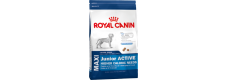 Royal Canin 2 x Maxi Puppy ACTIVE - 15kg (30kg)