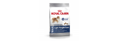 Royal Canin 2 x Maxi Light Weight Care 15kg (30kg)