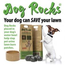 Dog Rocks Ingenious Dog Rocks 200g